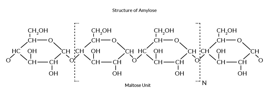 Structure-of-Amylose1